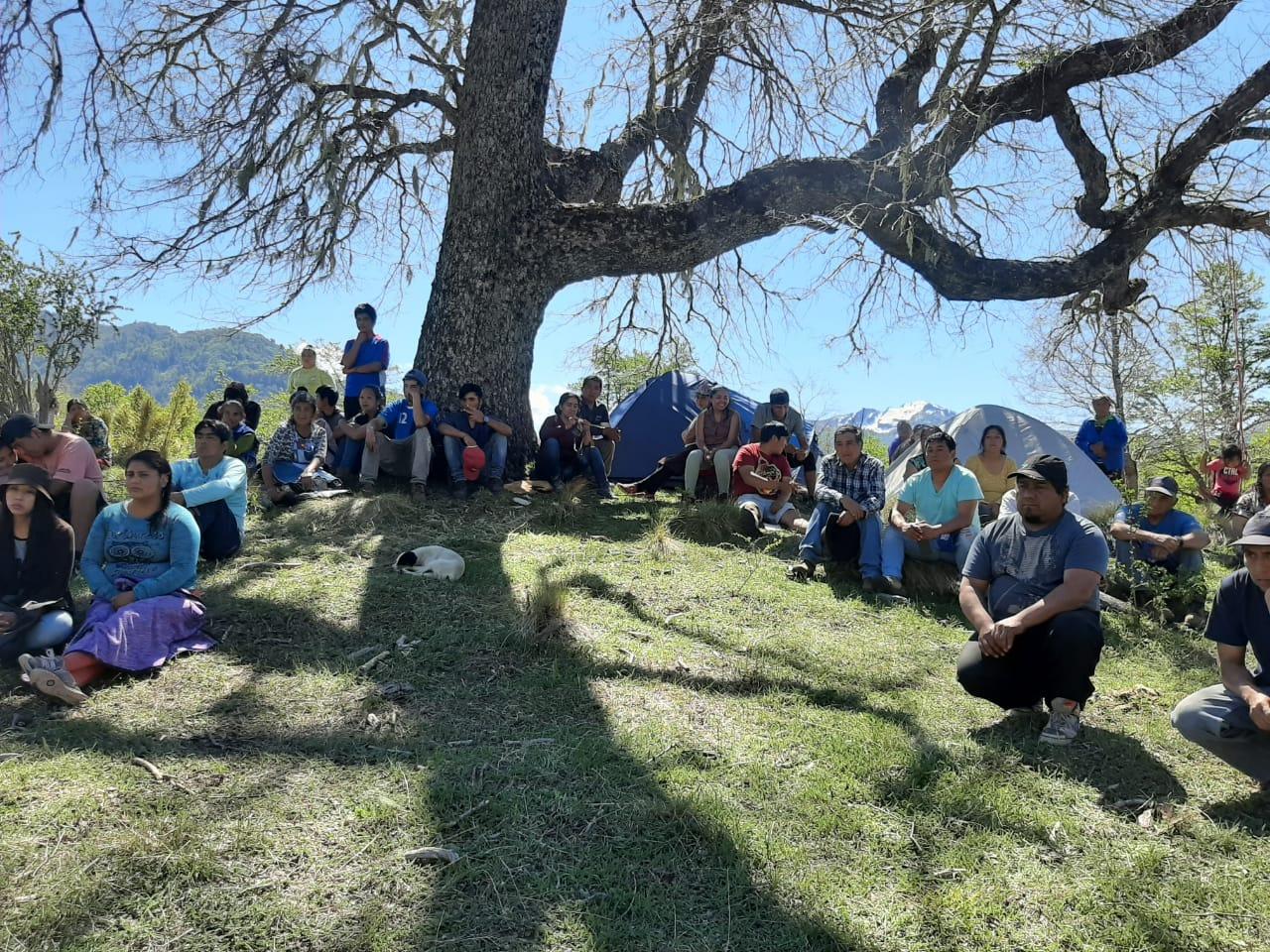 Comunidades mapuche pewenche en la recuperación territorial