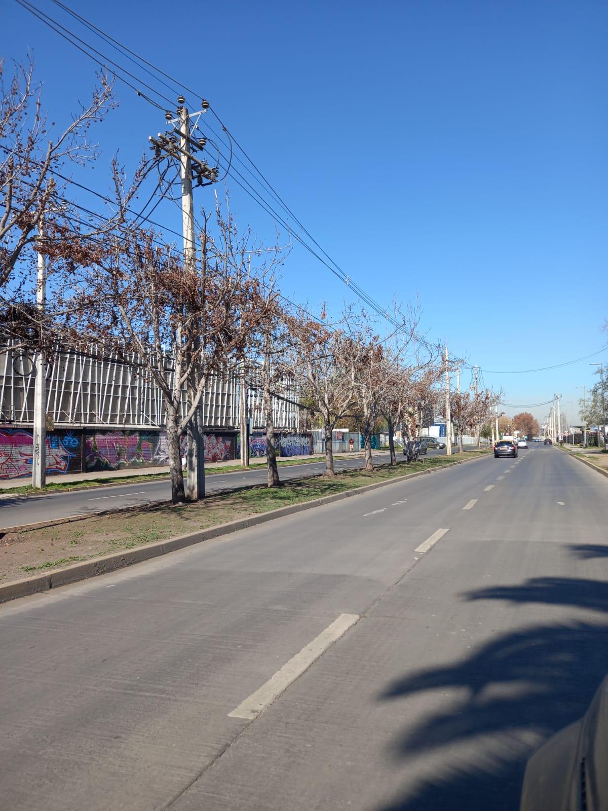 Bandejon Central Sur los Libertadores (1013 m2)