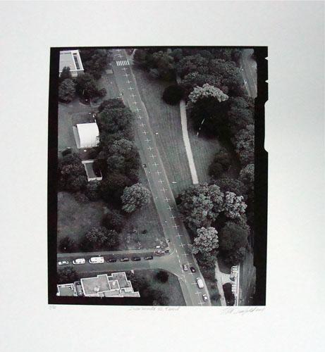 Una milla de cruces sobre el pavimento, 2007. Museo Nacional de Bellas Artes, Santiago