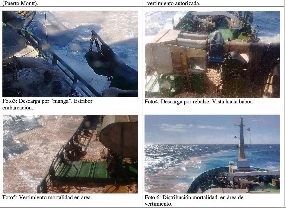 Barcos vertiendo salmones muertos en descomposición. Fuente: Armada de Chile