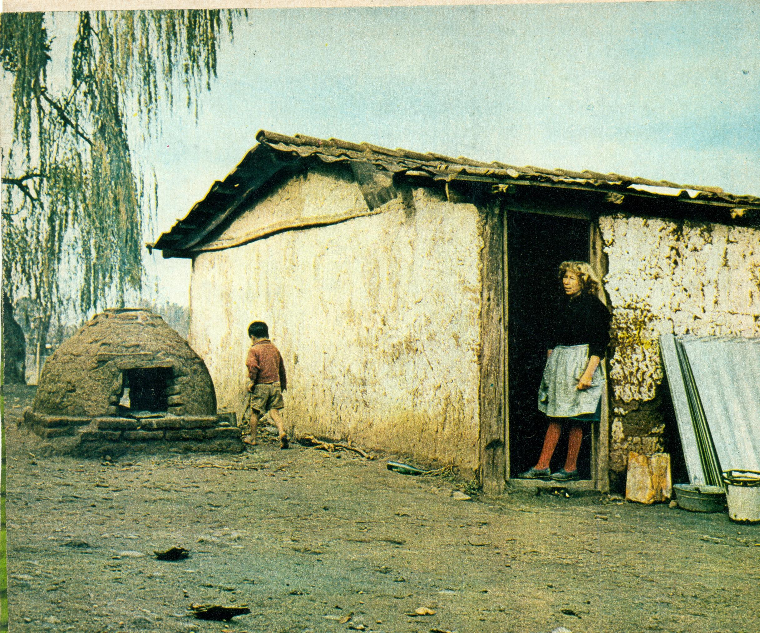 El paisaje tradicional del campo durante décadas. Foto de Hernán Castillo.