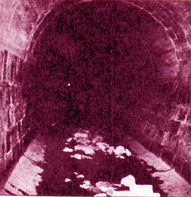 El túnel donde se hallaron los cuerpos.
