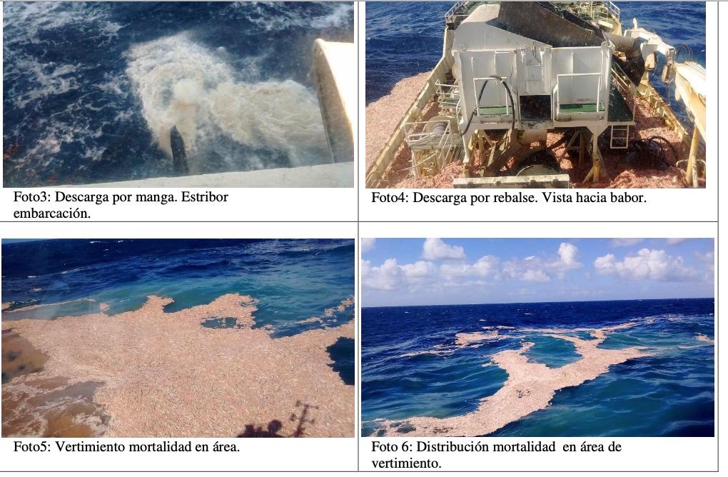 Residuos de los vertimientos. Fuente: informe de la Armada de Chile