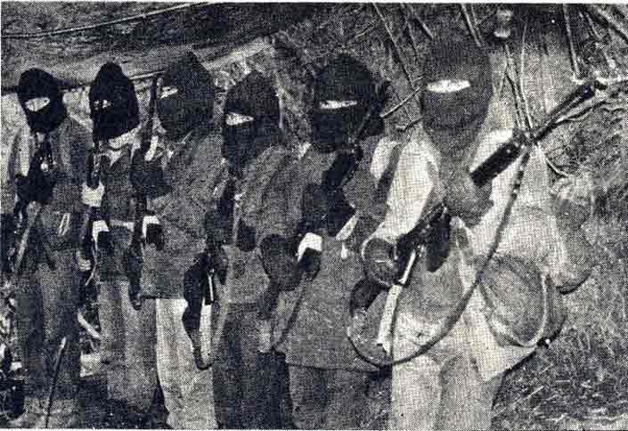 La guerrilla de Neltume