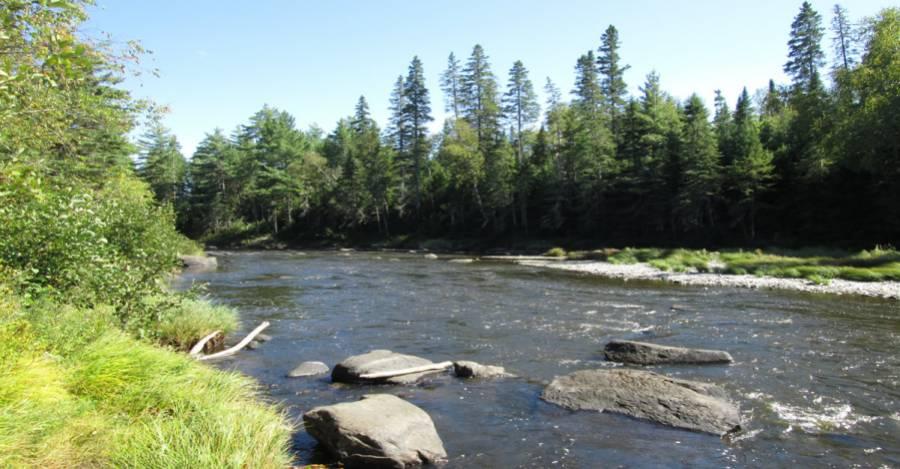 El caso del río Penobscot en Maine ayudó a inspirar el acuerdo. Foto: American Rivers