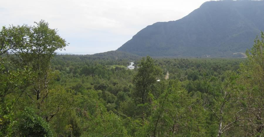 Vista desde la casa de Rodrigo Ubilla en la Comunidad Mariano Millahual / Interferencia