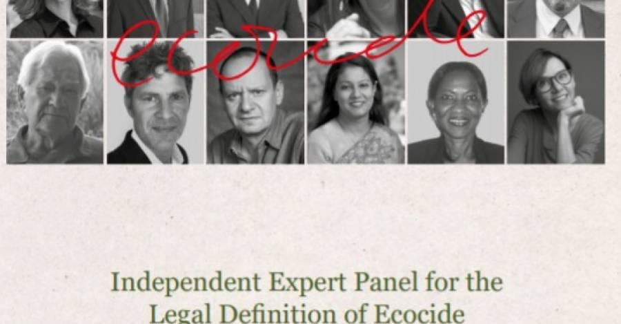 Portada del documento que entrega una definición legal al ecocidio
