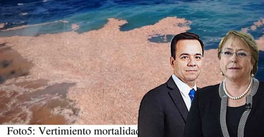 De fondo, una de las descargas de salmones. Al frente, Bachelet y su ministro de economía, Luis Felipe Céspedes