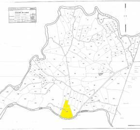 Mapa de las hijuelas resultantes de la división del título de merced. En amarillo, la hijuela 127 lugar donde se encuentran los lotes 12 y 14 propiedad de Rodrigo Ubilla.