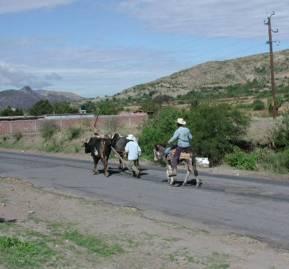 Campesinos zapotecas regresan de la 'milpa,' un jardín comunal, en Oaxaca, México. Jeffrey H. Cohen, CC BY-SA